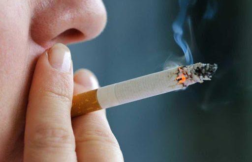 نجع حمادي تستهلك 15 مليون سيجارة