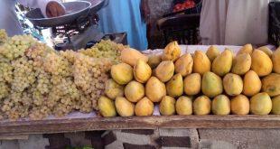 أسعار الخضروات والفواكه
